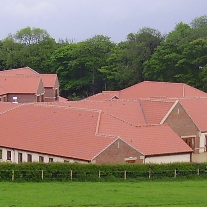 cropped-tiled-roofs.jpg